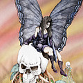 Nexus The Dark Fairy by Preston Shupp