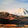 Ngauruhoe Rising by Lynette Bell