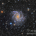 Ngc 6946, The Fireworks Galaxy by Michael Miller