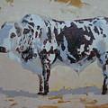 Nguni Bull by Yvonne Ankerman