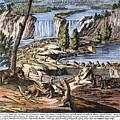 Niagara Falls: Beavers, 1715 by Granger