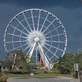 Niagara Skywheel by Nina Kindred
