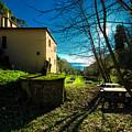 Niasca Hermitage I Portofino Park Passeggiate A Levante by Enrico Pelos