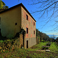 Niasca Hermitage II Portofino Park Passeggiate A Levante by Enrico Pelos