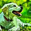 Nice Dog by Leonardo Digenio