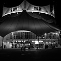 Night At The Circus Number Two by David Lee Thompson