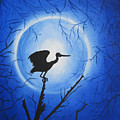 Night Bird by Nandini Dave