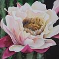 Night Cactus by Faye Tambrino