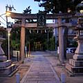 Night Falls On Esaka Shrine by Osaze Cuomo
