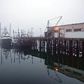 Night Fog Along The Dock by Bob Orsillo