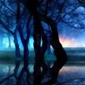 Night Fog In A City Park by Francesa Miller