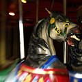 Night Mares At The Central Park Carousel 3 by Dorothy Lee