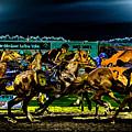 Night Racing by David Patterson