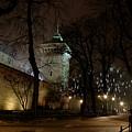 Night Walk by Marta Grabska-Press