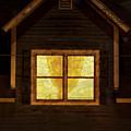 Night Window by Tom Singleton