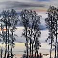 Nightfall Approaching by Marilyn  McNish