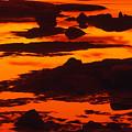 Nightfall Silhouettes by Irwin Barrett