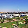 Nile Cruise Ships Aswan by Debbie Oppermann