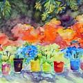 9 Potted Plants by Caroline Patrick