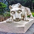 Nittany Lion by Paul Kercher
