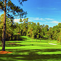 No. 15   Fire Thorn 530 Yards Par 5 by Don Kuing