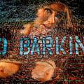 No Barking by Harry Spitz