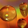 No Drop In The Bucket by Heiko Koehrer-Wagner