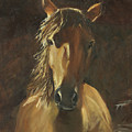 No Fences Quarter Horse Oil Painting By Kmcelwaine by Kathleen McElwaine