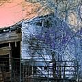 No Ordinary Barn by Betty Northcutt