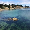No Place Like Monterey by Glenda Collins