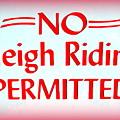 No Sleigh Riding by Ed Weidman