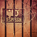 No Trespassing by Carolyn Marshall