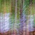 Noland Creek Abstract 1 by Gary Bond