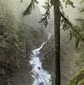 Wonderful Waterfall by Crystal Hoeveler
