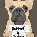 Normal Is Boring by Priscilla Wolfe