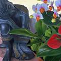 Norma's Buddha by Robyn Siani