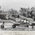 North American P-51b Mustang by Douglas Castleman