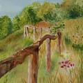 North Carolina Apple Orchard by Judy Swerlick