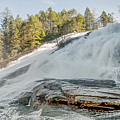 North Carolina - Dupont State Forest - Waterfall Collection by Ryan Kelehar
