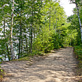 North Country Trail In Pictured Rocks National Lakeshore-michigan  by Ruth Hager
