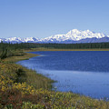 North Face Of Mount Mckinley, Lake by Rich Reid