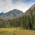 North Face Of Mount Sneffels Above Blaine Basin In The San Juan Mountains Of Colorado by Brendan Reals