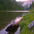 North Fork Of The Clearwater by Idaho Scenic Images Linda Lantzy