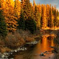 North Fork Yaak River Fall Colors #1 by Robert Hosea