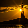 North Light Sunflare by Tim Kirchoff