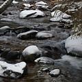 North St. Vrain Creek by Cynthia Cox Cottam