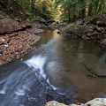 North Suck Creek Fall by Paul Rebmann