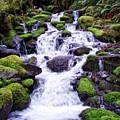 North Umpqua Wild And Scenic River by Ingrid Smith-Johnsen