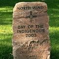 North Wind by Kelly Awad