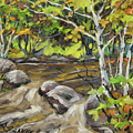 Northerm Stream Woodland Created By Richard T Pranke by Richard T Pranke
